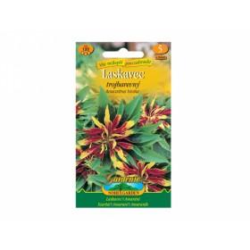 Amaranthus tri/laskavec/žl-zl