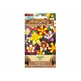 Orlíček zkřížený - mix (Aquilegia caerulea)