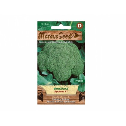 Brokolice APOLENA F1 60396