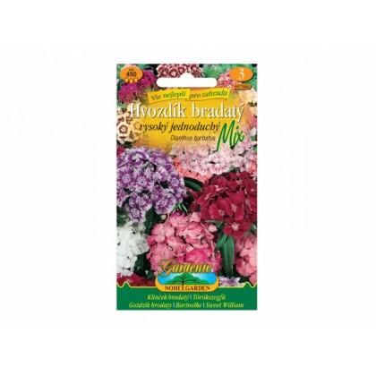 Dianthus barb/hvozd.br/v.je