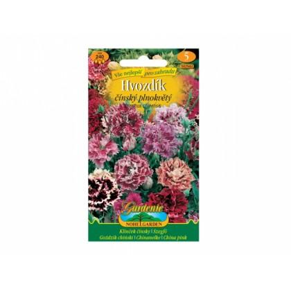 Dianthus ch/hvoz.čí/pl.sm =