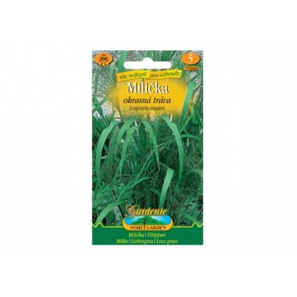 Eragrostis eleg/milička/okr.tr