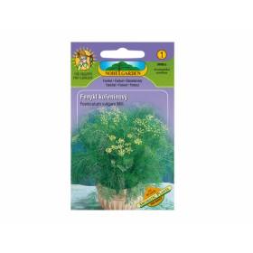 Fenykl kořeninový Aromatil plants