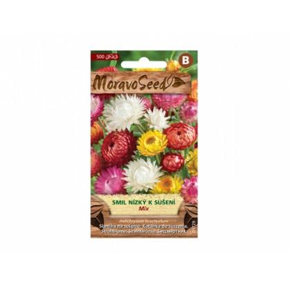 Helichrysum br/smil/n.sm 01729