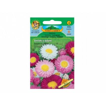 Helipterum ros/smilek/sm =