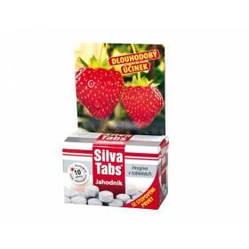 Hnojivo SILVA TABS na jahody 250g