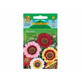 Kopretina kýlnatá - mix (Chrysanthemum carinatum)