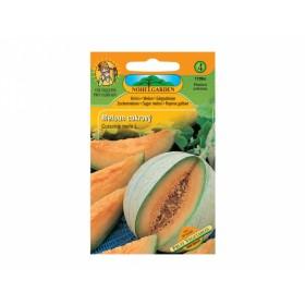 Meloun cukrový Melba