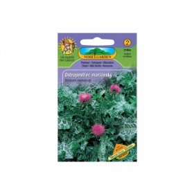 Ostropestřec Medicinal herbs