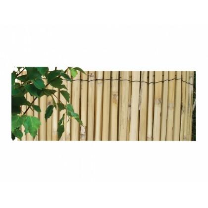 Rohož rákos štípaný 2x5m