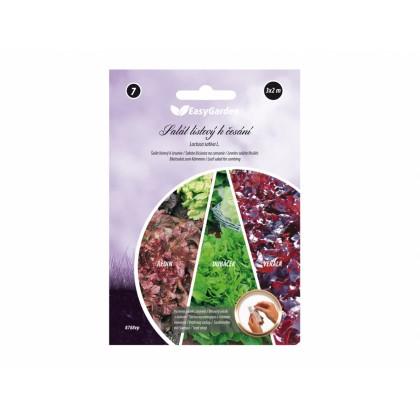 Pásek výsevný Salát listový DUBÁČEK, REDIN, VERALA 3x2m