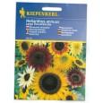 Slunečnice - Helianthus velkokvětá Mix