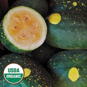 Meloun Moon&Stars - žlutý (Citrullus lanatus) 5 semen