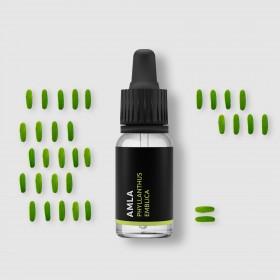 Amla - 100% přírodní esenciální olej 10ml Pěstík
