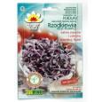 Semena na klíčení - Ředkvička Red Purple - 10g