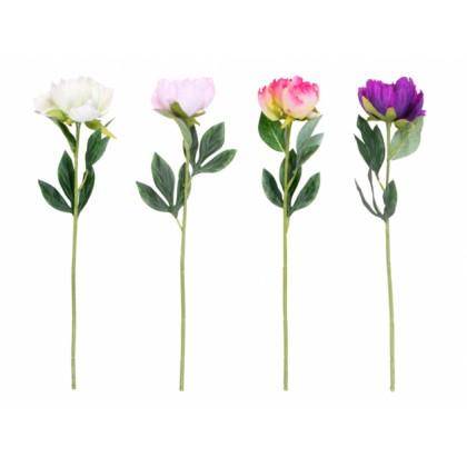 Květina PIVOŇKA KVĚT X1 mix 60cm 8cm