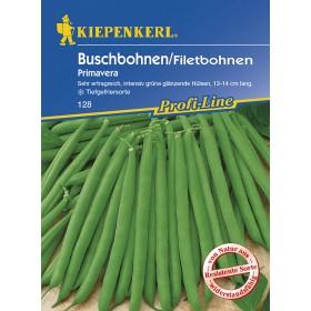 Keříčková fazole Primavera - semena fazole
