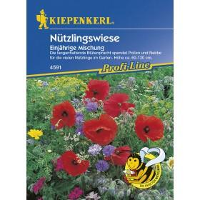 Květinová louka pro užitečný hmyz
