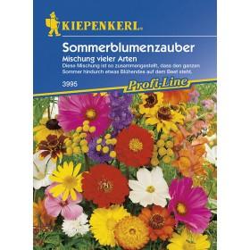 Květinová směs - Letní květinové kouzlo