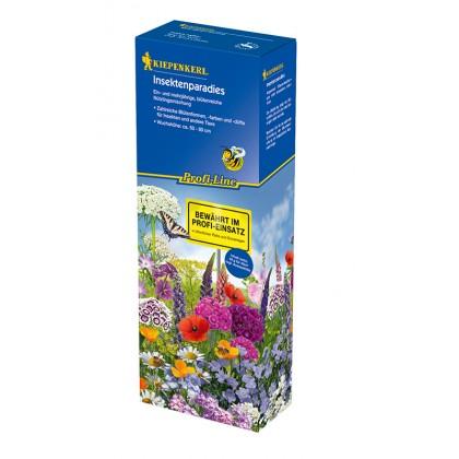 Květinová louka - ráj pro hmyz
