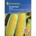 Kukuřice setá Tatonka