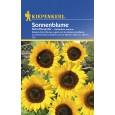 Slunečnice - Helianthus řezaný zázrak