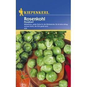 Růžičková kapusta Roodnerf - semena růžičkové kapusty