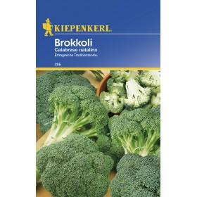 Brokolice - Calabrese natalino