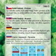 Salát hlávkový Přažan ledový - semena 0,5 g