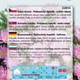 Astra Průhonický trpaslík - Růžová - semena 0,5 g