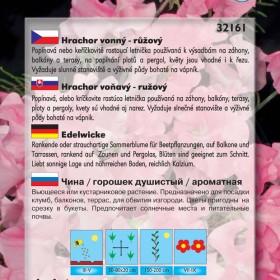 Hrachor vonný - Růžový - semena 3 g