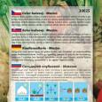 Celer Bulvový - Maxim - semena 400 ks