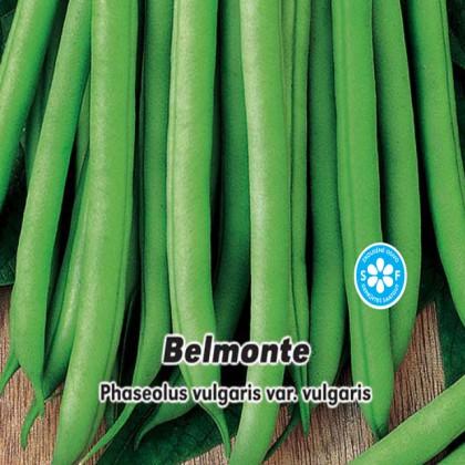 Fazol tyčkový - Belmonte -15g