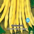 Fazol zahradní tyčkový - Goldmarie 1, - semena 5 g