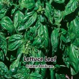 Bazalka pravá - Genovesse - semena 0,4 g