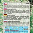 Tymián obecný  - semena 0,2 g