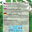 Koriandr setý - semena 4 g