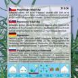 Rozmarýn lékařský - semena 0,1 g