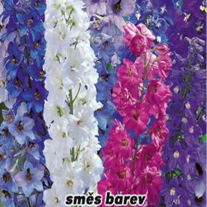 Stračka vyvýšená - směs barev - semena 0,3 g