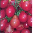 Rajče tyčkové-hruškovité-Radana - semena 40 ks
