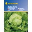 Ledový salát Grandes Lago118 – semena salátu ledového