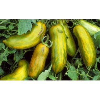 Rajče Green Sausage - zelené (Solanum lycopersicum ) cca 15 semen