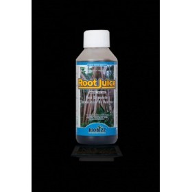 Rootjuice 250ml