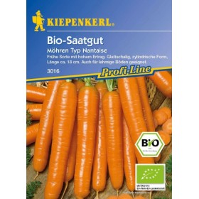Mrkev raná - Jeanette BIO (Daucus carota)